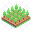 Forest Virgin Forest Woodland Icon