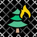 Burn Tree Fire Icon