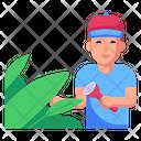Forest Explorer Icon