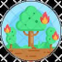 Bushfire Wildfire Forest Fire Icon
