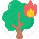 Forest Fire Icon
