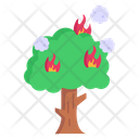 Burn Tree Forest Fire Disaster Icon