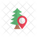 Forest Map Tree Icon