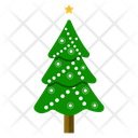 Forest Tree Christmas Tree Evergreen Tree Icon