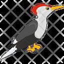 Forestry Bird Icon