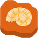 Fossil Icon