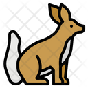 Fox Zoo Animals Icon