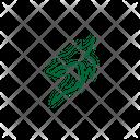 Design Icon Fox Icon