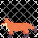 Fox Dog Animal Icon