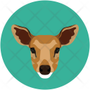 Fox Animal Wild Icon