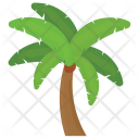 Foxtail Palm tree Icon
