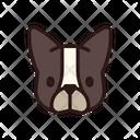 French Bulldog Dog Puppy Icon