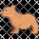 French Bulldog Bulldog Animal Icon