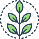Fresh Green Natural Icon