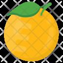 Orange Fresh Citric Icon
