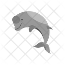 Freshwater Dolphin Unique Animal Icon