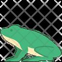 Amphibian Frog Animal Icon
