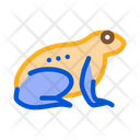 Tropical Frog Wood Icon