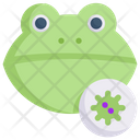 Frog Virus Icon