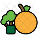 Fruit Vegetables Diet Icon