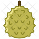 Fruit Durian Fit Icon
