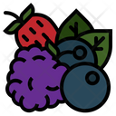 Berries Berry Blueberry Icon