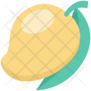 Fruit Juicy Mango Icon