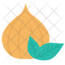 Fruit Natural Healthy Icon