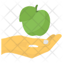 Fruit Donation Icon