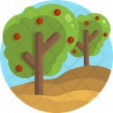 Fruit Farm Plant Tree Icon