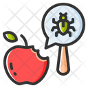 Pest Insect Animal Icon