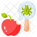 Fruit Insect Food Insect Pest Icon