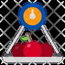 Fruit Scales Farming Garden Icon