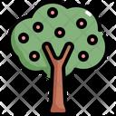 Fruit Tree Nature Icon