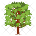 Fruit Tree Wild Tree Shrub Icon