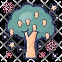 Fruit Tree Shrub Forest Tree Icon