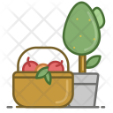 Fruits Fruit Drink Icon