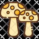 Fungi Mushroom Mushroom Plant Icon