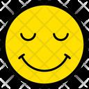 Funny Smile Amusing Icon