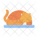 Furry Cat Sleeping Cat Cat Icon