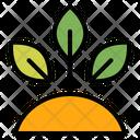 Garden Gardening Growth Icon