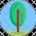 Garden Botanical Tree Icon
