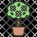 Gardenia Nature Plant Icon
