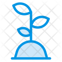 Gardening Plant Growth Icon