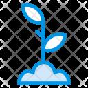 Gardening Plant Nature Icon
