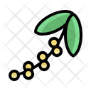Gardening Orchid Nature Icon