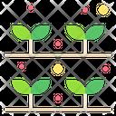 Gardening Plant Plantation Icon