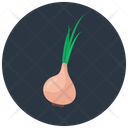 Garlic Natural Food Healthy Diet Icon