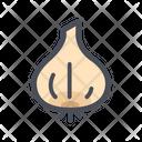 Garlic Spice Root Icon