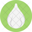 Garlic Allium Cooking Icon